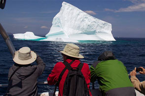 Click photo for more info about The Iceberg Festival