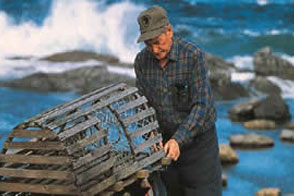 Local Scenery - Fisherman stacking traps